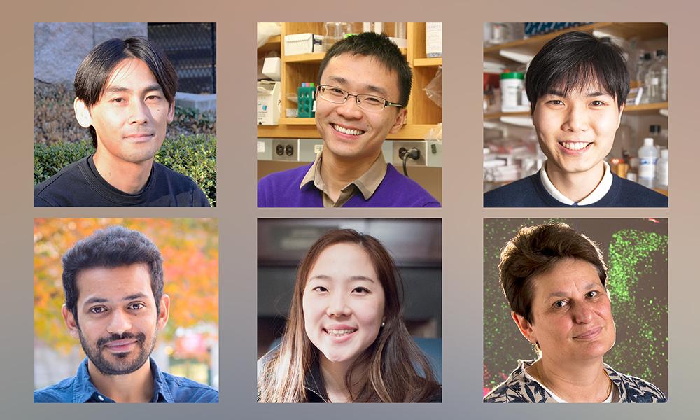 (tl to br) Yoh Isogai, Herbert Wu, Michael Ho-Young Ahn, Dj Bambah-Mukku, Vivian Hua, and Catherine Dulac