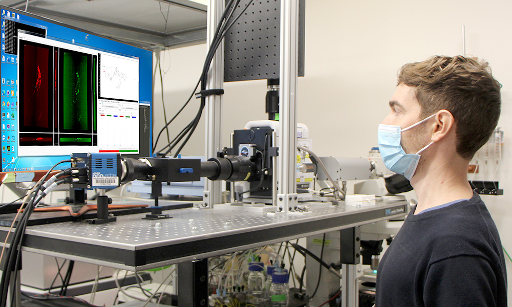 Vlad Susoy in front of a tacking microscope measuring brain activity in behaving C. elegans nematodes
